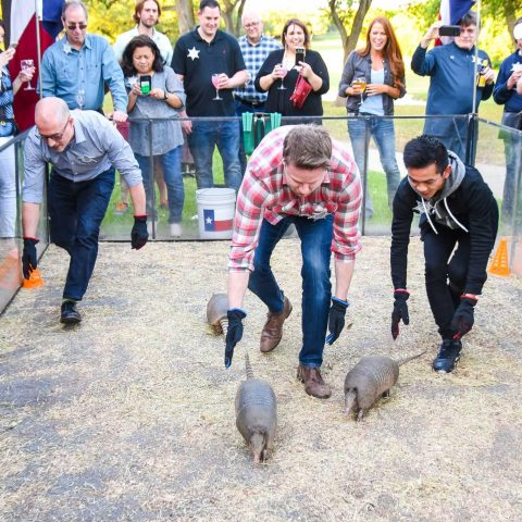 Armadillo Racing - Texas Style Entertainment